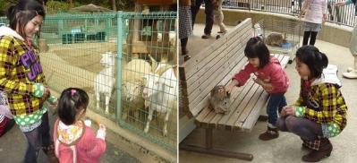 20120320大牟田市動物園 (1)