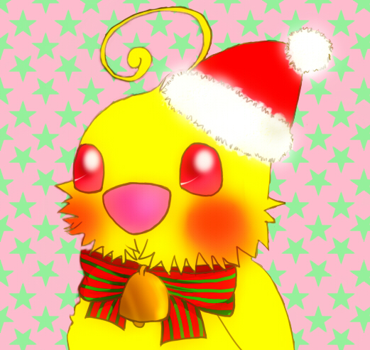 インコクリスマス2010