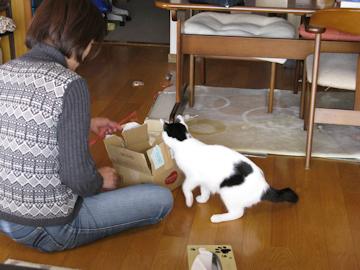 20091226_60-mini.jpg