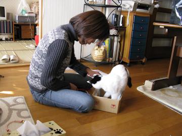 20091226_65-mini.jpg