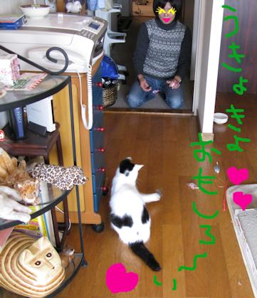 20091226_75-mini.jpg