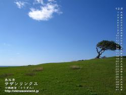 デスクトップカレンダー,12月,沖縄