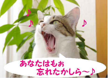 歌います!