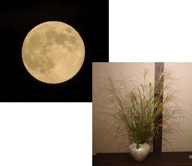 お月見セット~