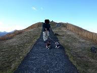 大室山風景4