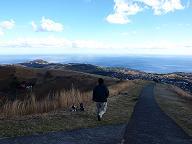 大室山風景3