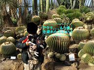 しゃぼてん公園6