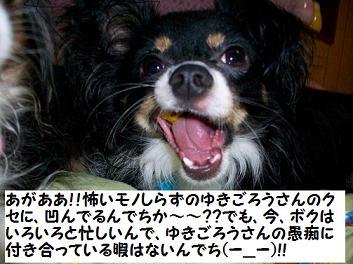 ブログ用 013