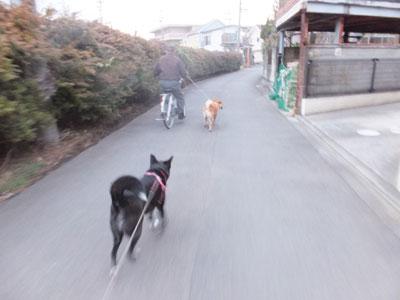 asanoooyama3.jpg