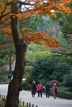 東山植物園3-9