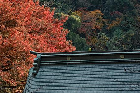 内々神社-4