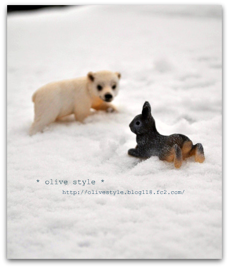 2010.2 ブログ用フォト 013