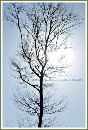 2010.3 ブログ用フォト 026