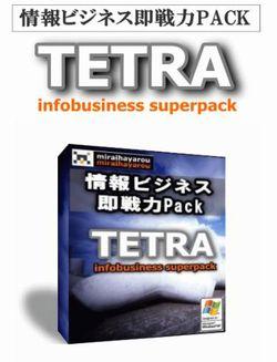 即戦力にこだわった稼ぎの仕組み【TETRA】 加藤 洋 副業ビジネス 評判