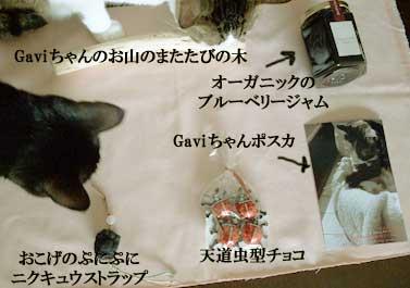 Gavichannmatatabinoki1.jpg
