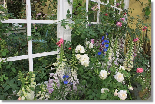 エミリー・ディキンソンの庭5
