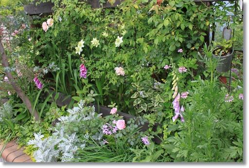 南面花壇2