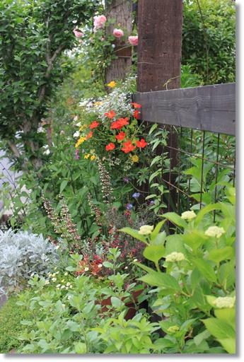 南面花壇3