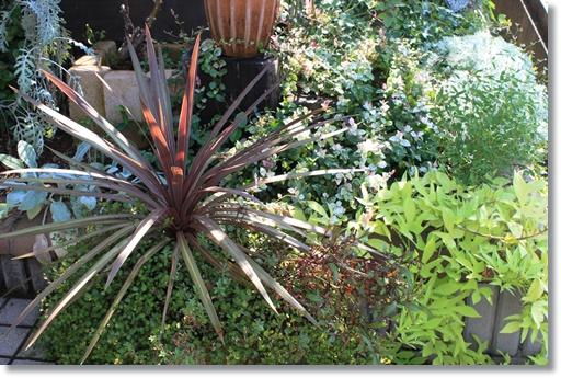 葉っぱの花壇1