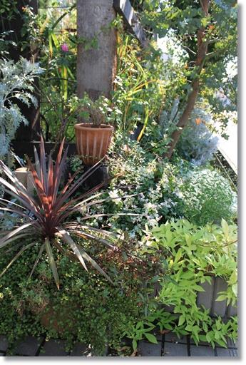 葉っぱの花壇2