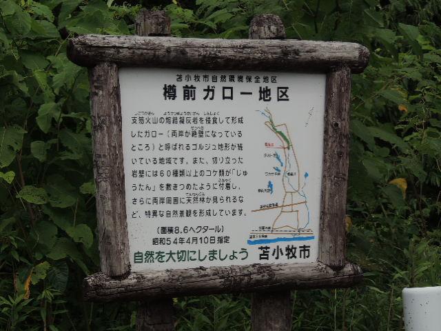 20120802 (11)