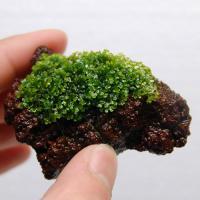プレモス溶岩石