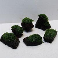ウォーターフェザー 溶岩石