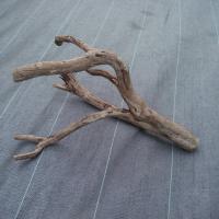 カッコイイ流木達3
