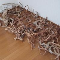流木コレクション1