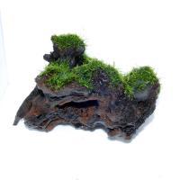 国産上物流木3