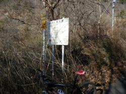 消化不良のため、林道攻めに変更
