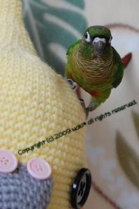 大好き♪オレたま帽