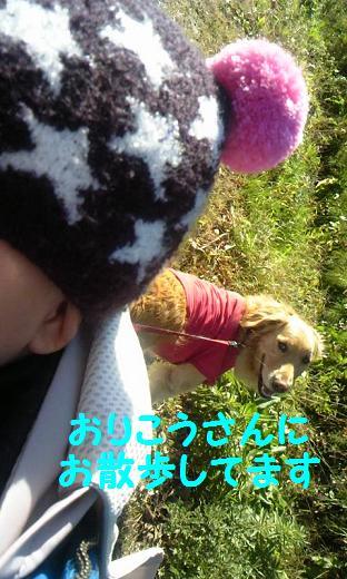 101214_1238_01.jpg
