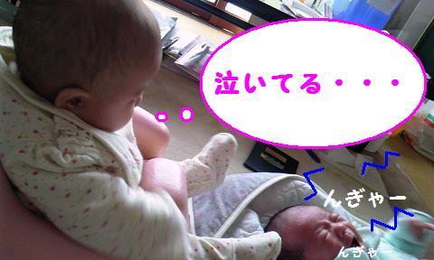 110125_1235_01.jpg