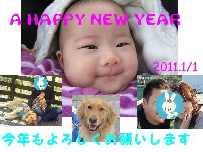 20110101.jpg