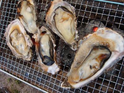 プリプリの牡蠣が入ってます