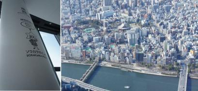 東京が360°見渡せます