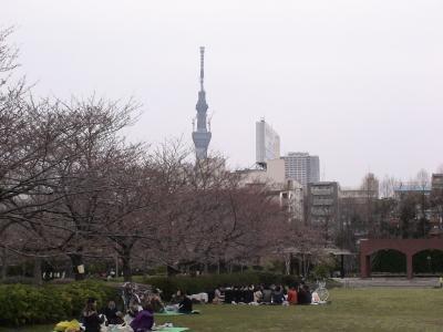 猿江恩賜公園と東京スカイツリー
