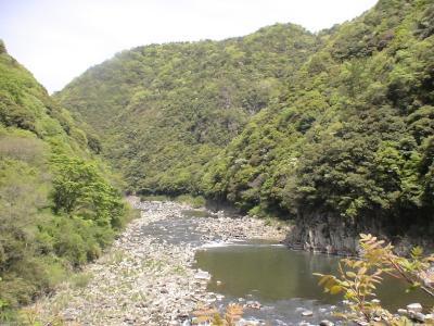廃線跡から望む武庫川河川敷