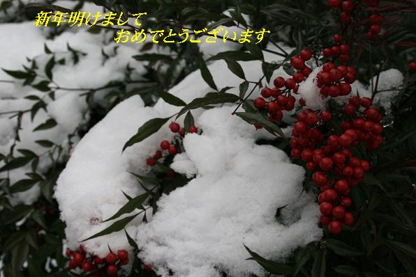 IMG_6759-1.jpg