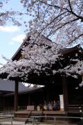 026 靖国神社