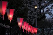 084 隅田公園