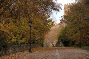 0774 Segovia