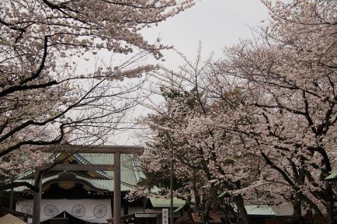 105 靖国神社