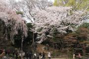 123 靖国神社