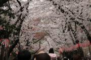 200 上野公園