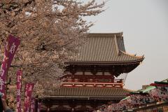 430 浅草寺