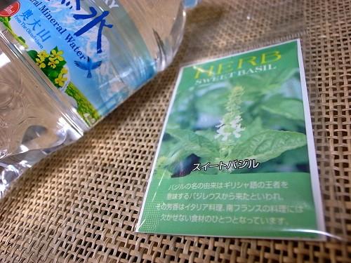 bajiru110413a.jpg