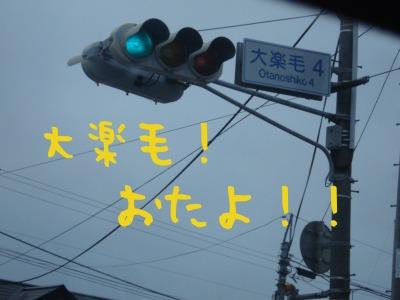 DSC06602.jpg
