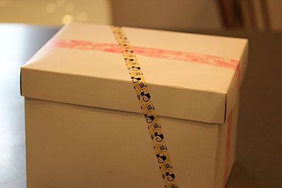 あるひ届いたかわうい箱